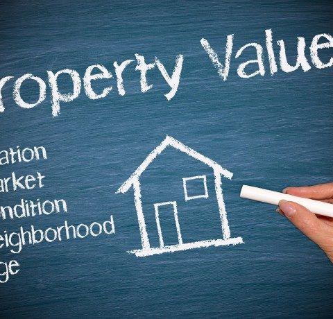 Professional property valuators