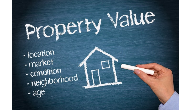 Professional property valuators